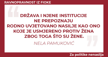 Nela Pamukovic Drzava i njene institucije